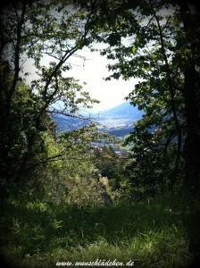 Blick vom Danielsberg 2