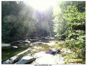 Fluss mit Sonne